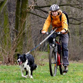 Girl Bikejoring With Her Dog