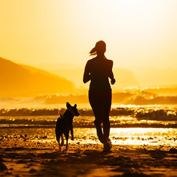Go Running With Your Dog