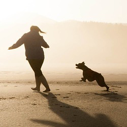 Girl Playing Chase With Dog On The Beach