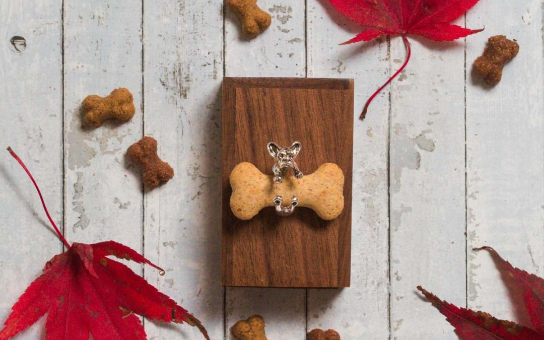 Top 10 recommended pet products for your dog for Christmas 2019