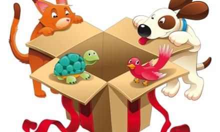 Buying Safer Pet Toys