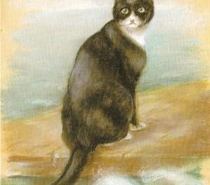Miraculous Feline Survival Stories