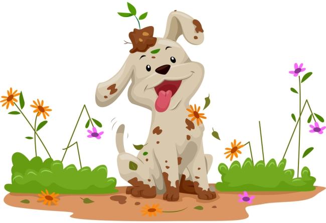 Maintaining a Dog-Free Garden