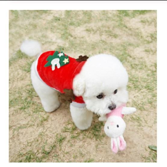 Christmas Cat Dog Santa Hoodie 2