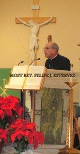 Bishop Felipe Estevez