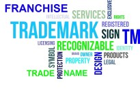 Franchises, Trademarks, and Trade Names