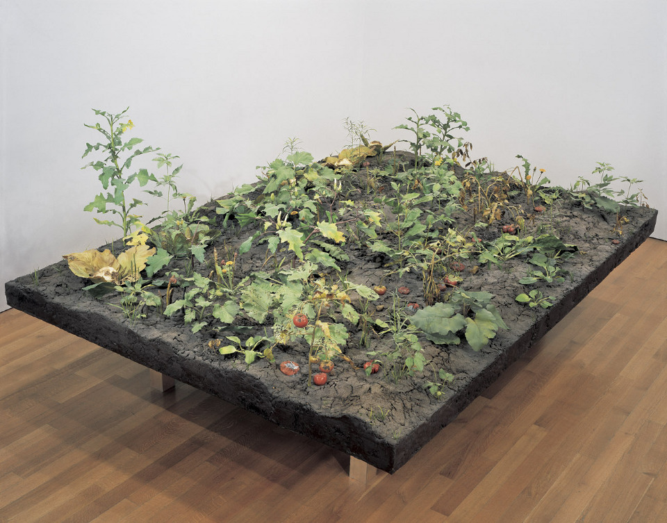 In a museum, an installation of realistic looking tomatoes and other plants left unattended and choked out by weeds.