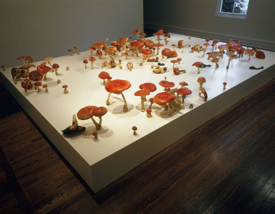 A field of mushrooms appears to grow from a plain white platform.