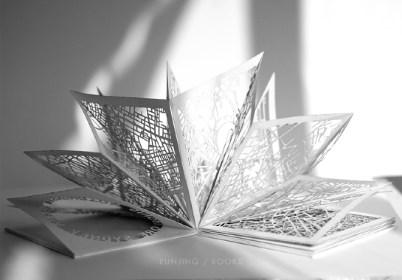 Runjong Wang Book Art