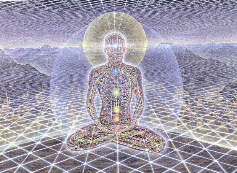 Image result for alex grey man in universe