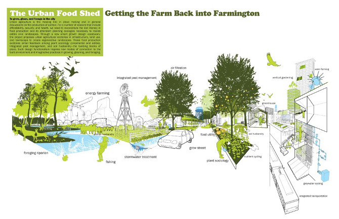 Landscape Design Vocabulary