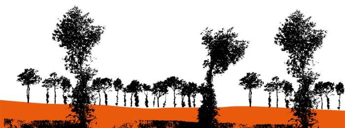 Les chênes du bocage : histoire de silhouettes