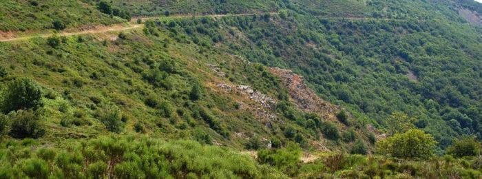 L'horizon montagneux de Lacaune