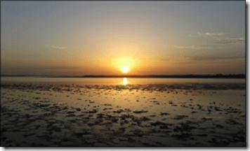 Diagnostic paysager de la Camargue
