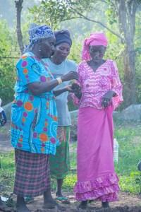 Plantation au jardin des femmes