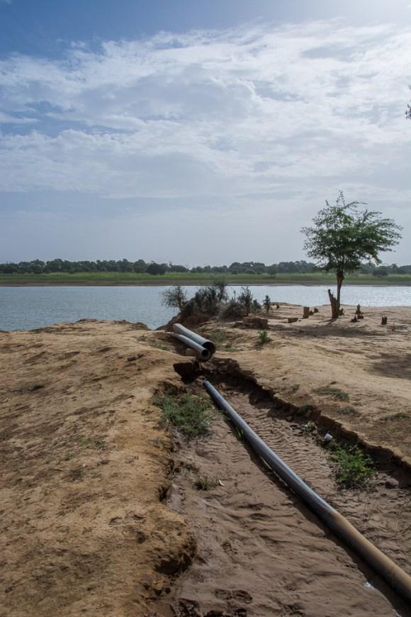 Irrigation au Sénégal près de Matam - Projet Entrepreneurs du Monde