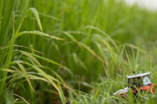 Bébé tracteur découvre les rizières pour la toute première fois ! - A Dong Hoi, Vietnam