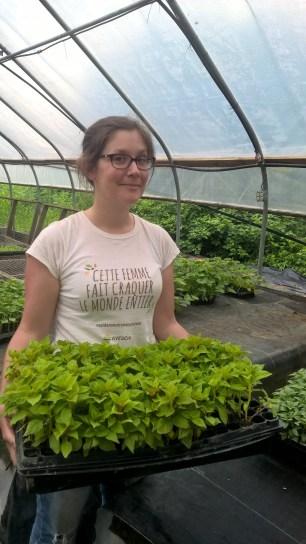 Little Seed Gardens, maraîchage et vente de paniers de légumes : Laure-Line heureuse dans la pépinière !