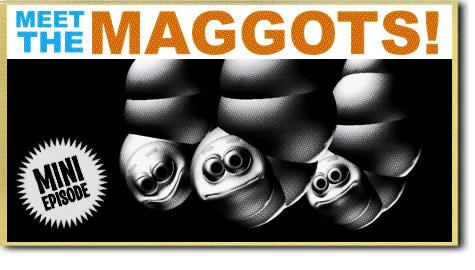Meet the Maggots