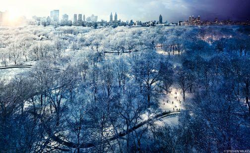 Central Park Snow, New York