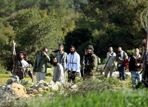 الخليل: مستوطنون يطلقون النار صوب رعاة أغنام في مسافر يطا