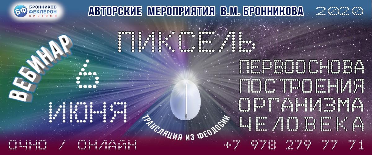 Вебинары В.М. Бронникова