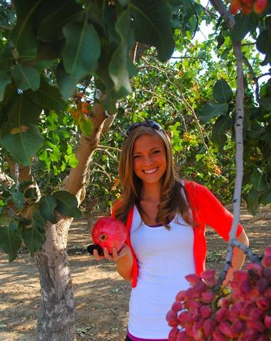 pom orchards 086