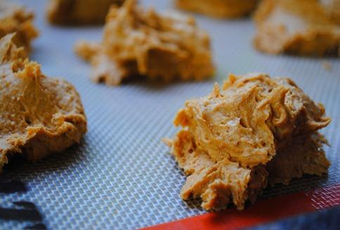 pumpkin spice cookies 028