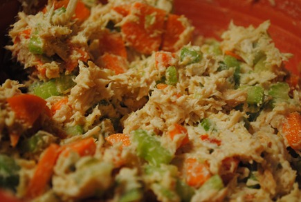 curried chicken salad 021