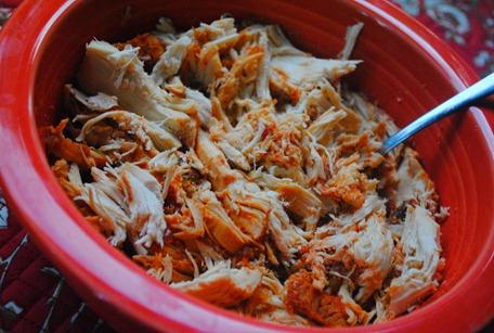 salsa chicken 026