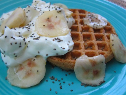 waffle with yogurt 040