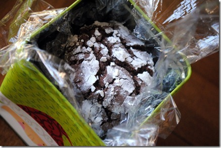 chocolate crinkle cookies 038-1