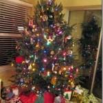 christmas tree 001-1