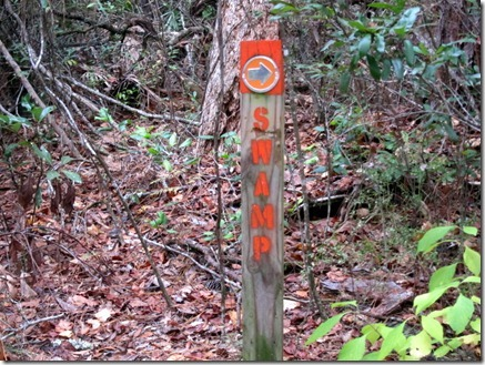 hiking 173