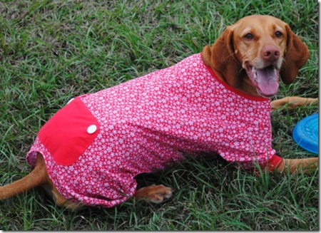dog pajamas red 046