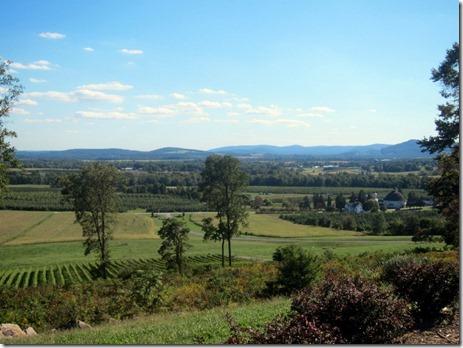 hauser estate winery 024