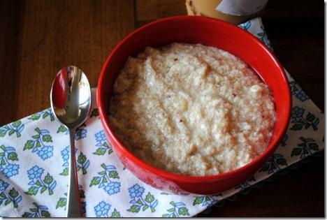 paleo oatmeal flax 016