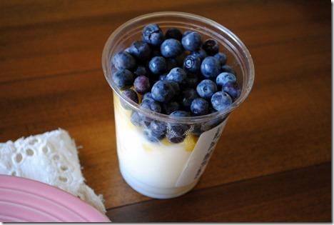 publix blueberry pineapple parfait