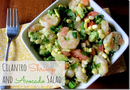 Cilantro Shrimp and Avocado Salad