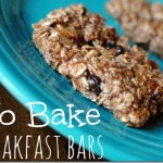 No Bake High Protein Breakfast Bars