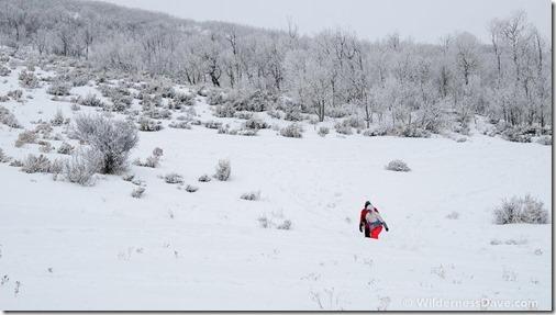 avalanche hunt