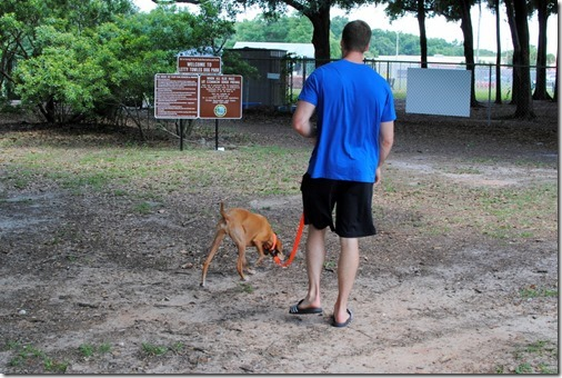 Ocala Dog Park