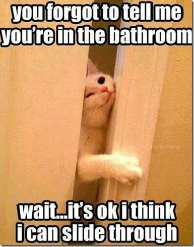 You Forgot To Tell Me You're In the Bathroom...