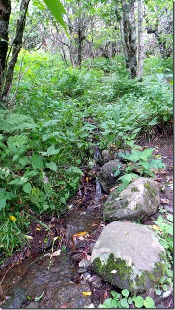 Carvers Gap Water