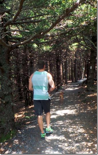 Hiking Carvers Gap