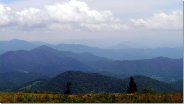 The Balds Roan Mountain View