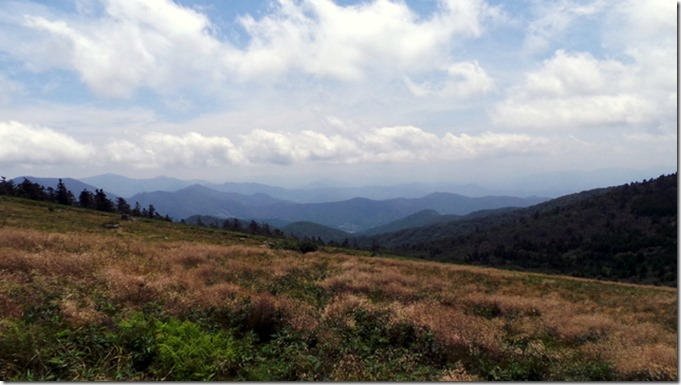 View from Round Bald