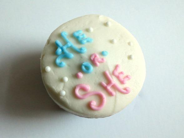 He or She Cupcake