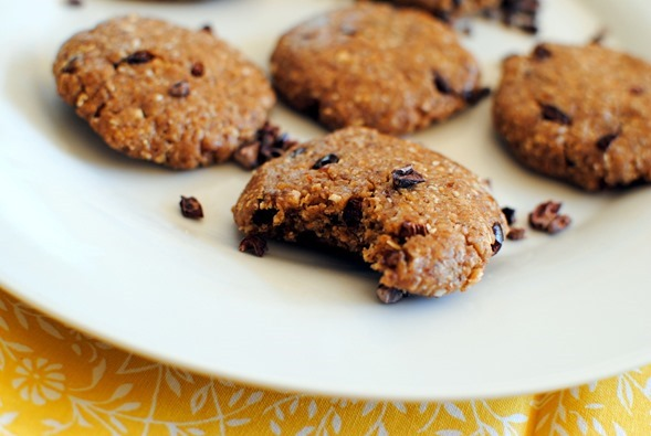 No Bake Cookie Recipe with Cacao Nibs