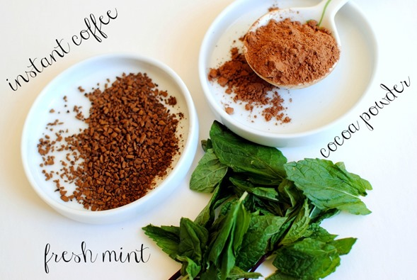 Mocha Mint Smoothie Ingredients